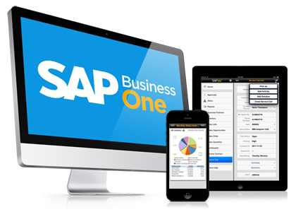 what-is-sap-b1